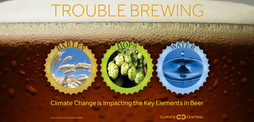 Zbog klimatskih promena ostajemo bez piva?