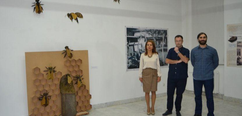 Kraljevo: Otvorena izložba posvećana pčelama