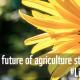 Prehrambena industrija uništava planetu