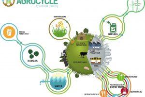 Zatvaranje kruga u agrobiznisu