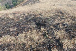 Zagajička brda devastirana u požarima