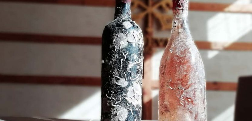 U Erdeviku prva srpska koralna vina