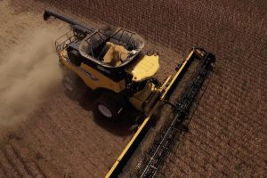 Amerika očekuje rekordan rod soje