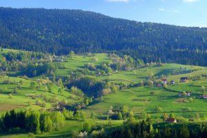 Država vratila 745 hektara Zlatara
