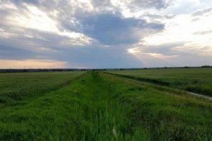 Poljoprivrednike bez dokaza kažnjavaju za odvodnjavanje