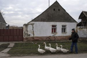 Vojvođanska sela sve više liče na staračke domove