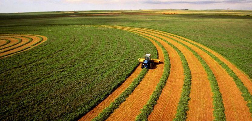 Ulaganje u poljoprivredu – tajkunski statusni simbol