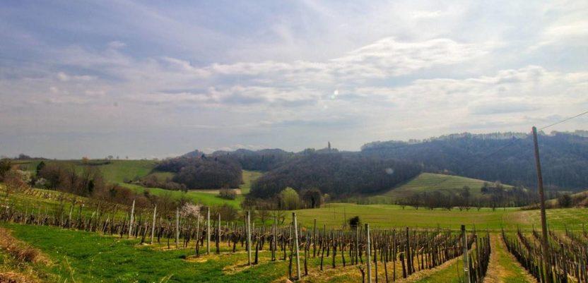 Austrijanci kupuju slovenačke njive