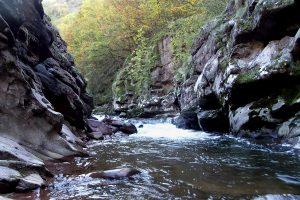WWF: Očuvane reke preduslov za razvoj zemlje