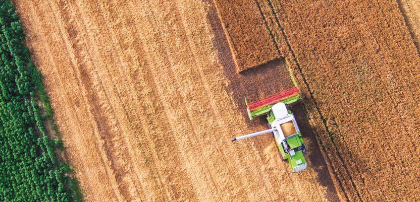 Roboti će nas spasiti od gladi?