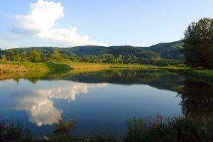 Čabradi: Ustavom zaštititi vode Srbije
