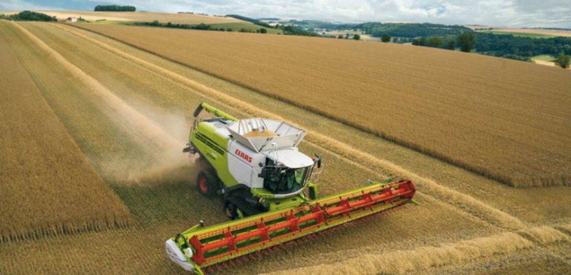 Cena ruske pšenice raste