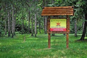 Apel: Sačuvajmo naše šume, potrebne su nam i posle praznika