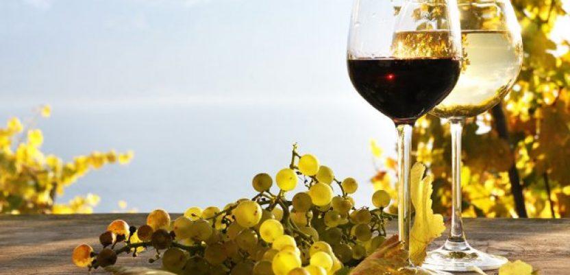 Pojačana kontrola grožđa i vina iz uvoza