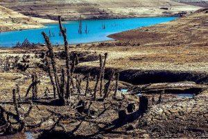 Tlo ne miruje oko Zaovinskog jezera