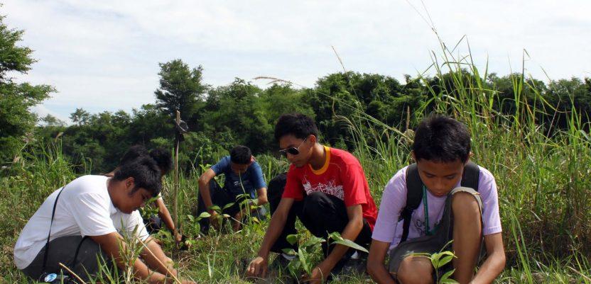 Filipini: Da bi diplomirali studenti treba da posade 10 stabala
