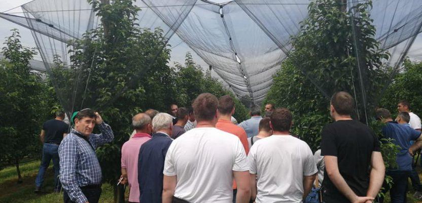 Sabor voćara – fakultet u voćnjacima