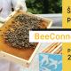 Otvoren konkurs za školu urbanog pčelarstva
