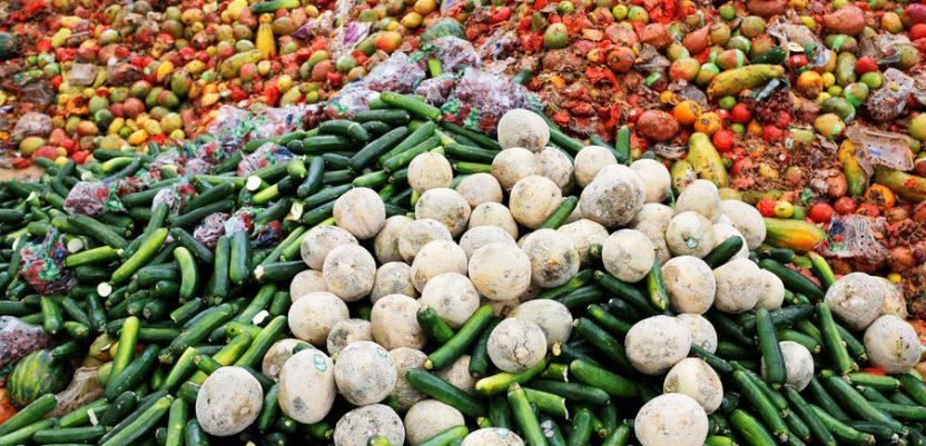 B-Fresh patent za rešavanje problema otpada od hrane