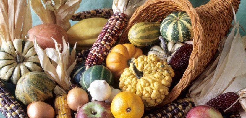 Promocija proizvodnje alternativnih biljnih vrsta