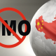 Hoće li Kinezi gajiti GMO biljke kako bi se prehranili