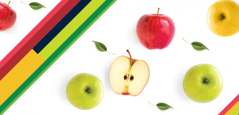 Sastanak srpskih proizvođača voća sa rumunskim kupcima