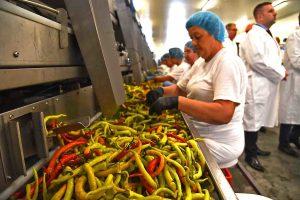 Nemci otvorili fabriku u Gospođincima