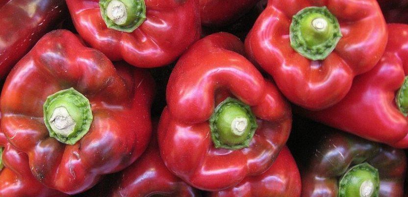 Dobar ovogodišnji rod paprike