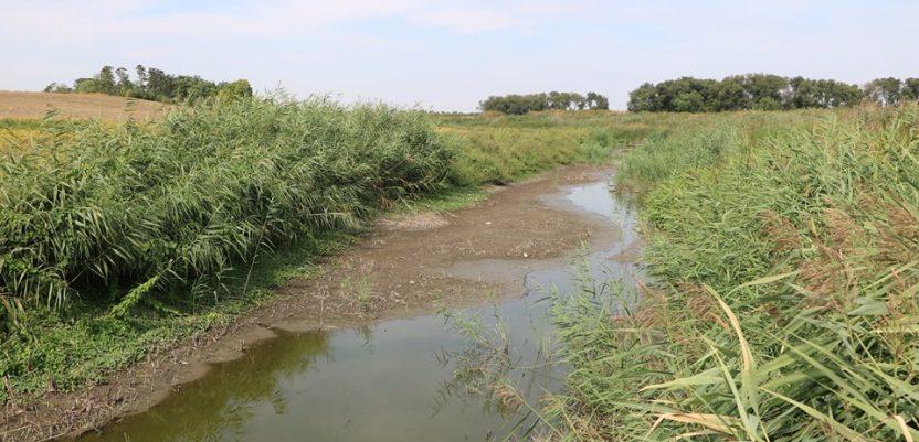 Reka Krivaja je ostala bez vode