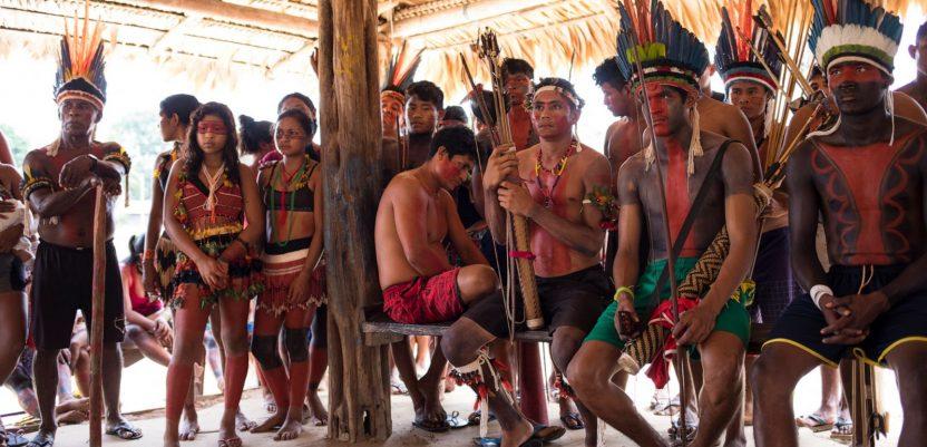 Amazonsko pleme se sprema za borbu sa ileagalnim drvosečama