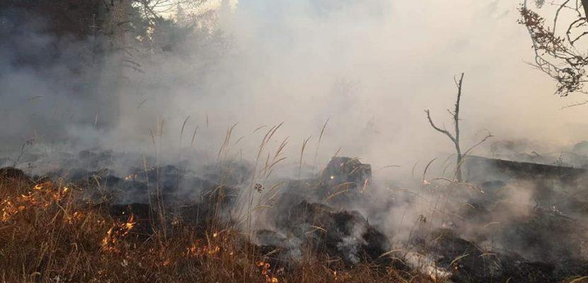 Srbija, zemlja sa najviše požara u Evropi u oktobru