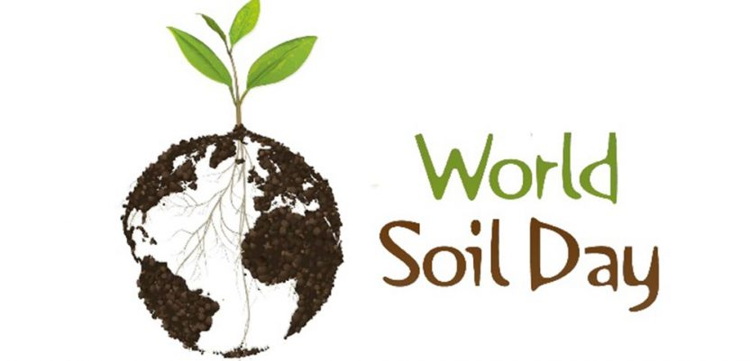 Organska materija dobra za zemljište, ali i za klimu