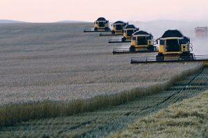Šta će korona uraditi svetskoj poljoprivredi?