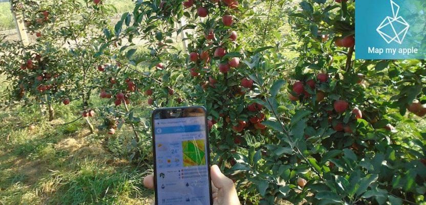 Digitalni agronomi za proizvođače jabuka