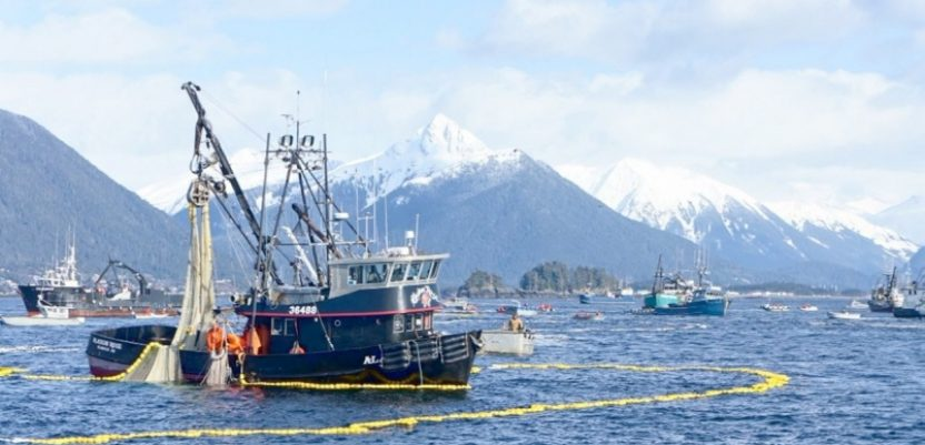 Na Aljasci i sezonci iz Srbije