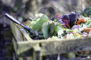 Javni poziv za upravljanje bio-otpadom