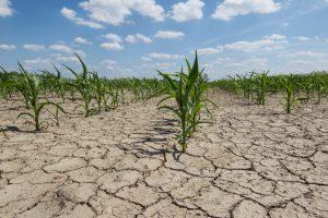 Mediteran i jugoistočnu Evropu očekuju suše