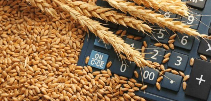 Ratari: Netačne tvrdnje da je pšenica skupa u Srbiji