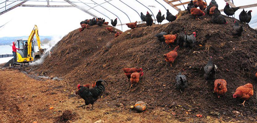 SAD: U Vermontu građani u obavezi da kompostiraju