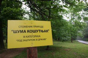 Tri dekana protiv seče šume na Košutnjaku