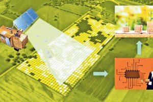 Razvoj veštačke inteligencije u Srbiji počinje sa 12 projekata