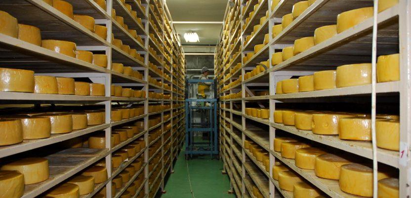 Mlekoprodukt počinje da izvozi na tržište EU i Kine