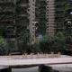 Zgrade sa vertikalnom šumom napuštene zbog komaraca