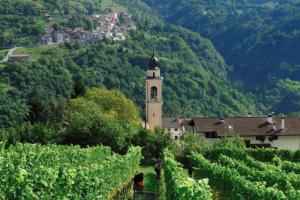 Trentino u Italiji je vinska regija godine