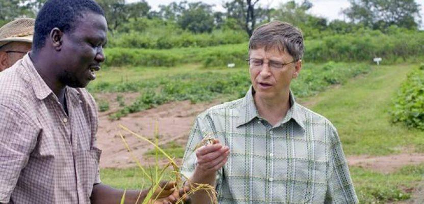 Bil Gejts među najvećim vlasnicima poljoprivrednog zemljišta u SAD