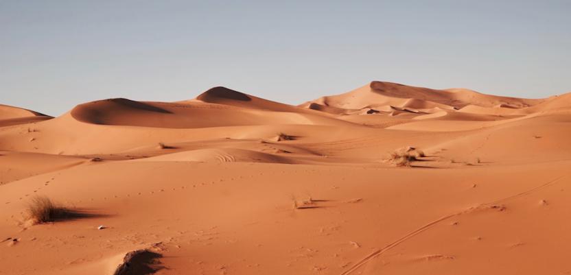 Naučnici tvrde da je Sahara nekada bila zelena