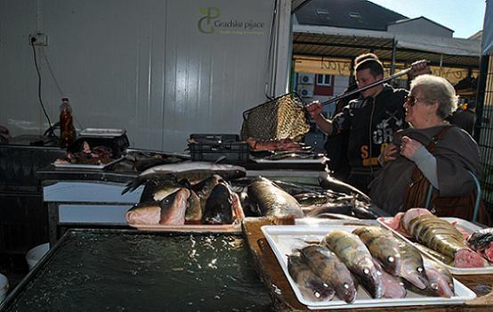 Slaba prodaja ribe
