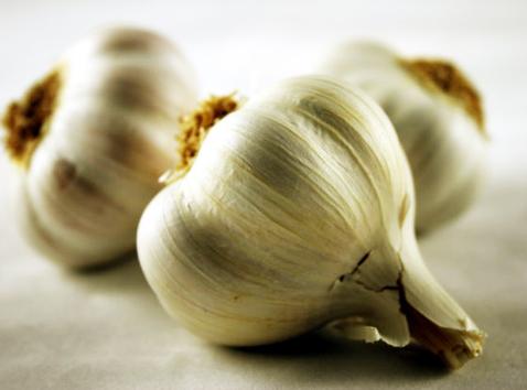 Predložen zakon o ograničenju konzumiranja belog luka