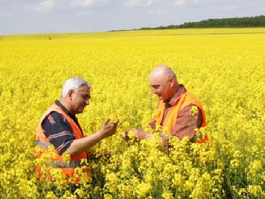 Saudijski UFHC kupuje poljoprivrednog giganta iz EU