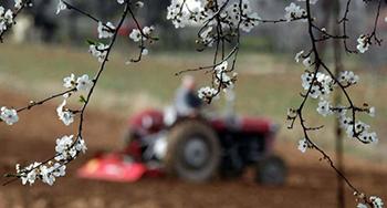 Prolećna setva na 1,6 miliona hektara kreće uskoro